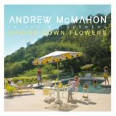 Upside Down Flowers-Andrew McMahon In the Wilderness