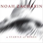 Noah Zacharin - No Oxygen