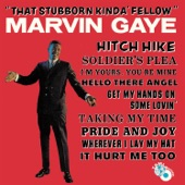 Marvin Gaye - Soldier's Plea