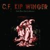 Kip Winger - How Far Will We Go (Down Incognito)  arte