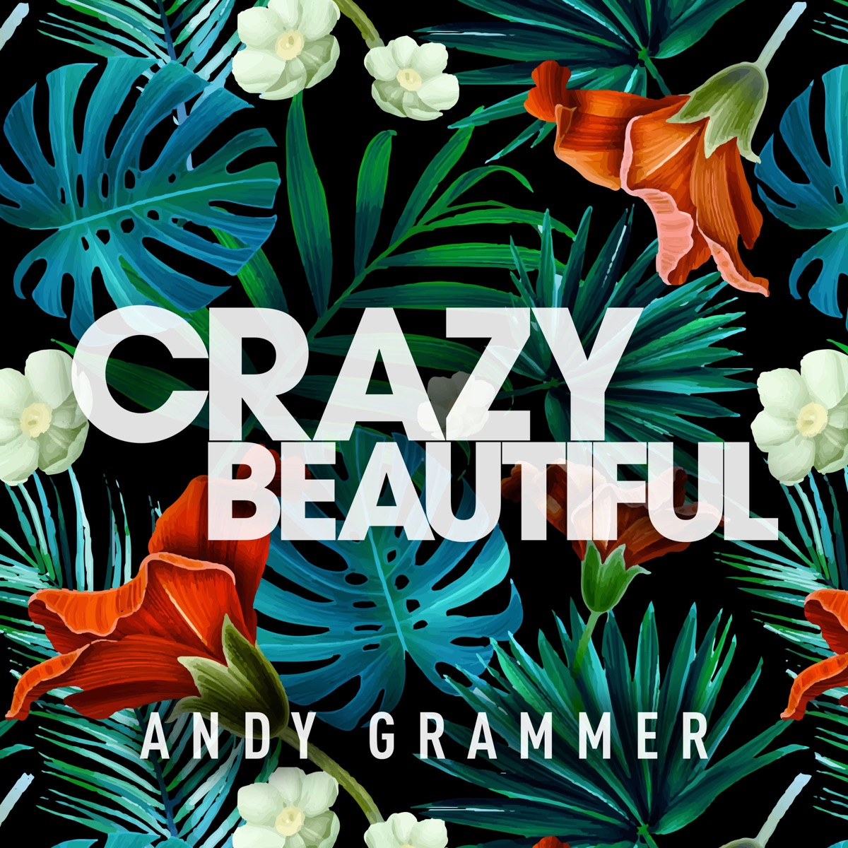 Crazy Beautiful - Single Album Cover by Andy Grammer