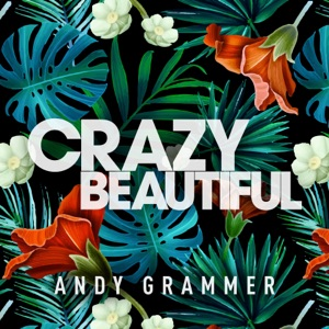 Andy Grammer - Crazy Beautiful (Live)