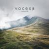 VOCES8 - She Walks in Beauty artwork