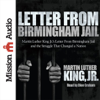 Martin Luther King - Letter from Birmingham Jail  artwork