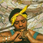 Pink Siifu - By Any Means (feat. Maxo)