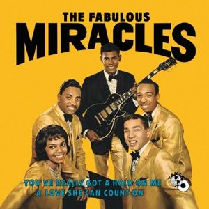 The Miracles - You've Really Got a Hold On Me