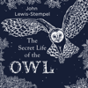 John Lewis-Stempel - The Secret Life of the Owl artwork