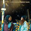 Perfect Rain - Curtis Walsh
