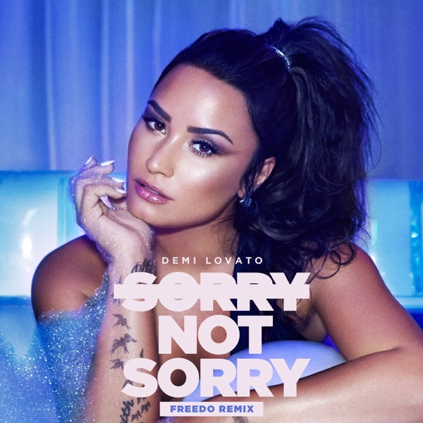 Sorry Not Sorry (Freedo Remix) - Single