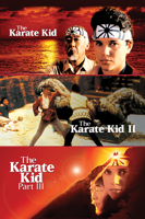Sony Pictures Entertainment - KARATE KID TRILOGY artwork
