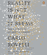 Reality Is Not What It Seems: The Journey to Quantum Gravity (Unabridged)
