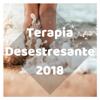 Musicoterapia & Meditación Maestro - Terapia Desestresante 2018 portada
