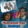 Bollywood Sad Mashups - Single, Kumar Sanu, Alka Yagnik & Pankaj Udhas