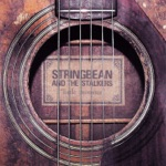 Stringbean & The Stalkers - Chance to Explain