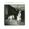 Van Morrison - Days Like This artwork