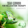 Relaxing Music Guys - Spiritual Healing artwork