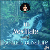 Meditate with Sounds of Nature – 111 Relaxing Tracks for Yoga Meditation, Relaxation Therapy for Massage, Reiki, Healing, Music for Deep Sleep