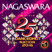The Album 25 Dancedhut Nation 2016 - Various Artists - Various Artists