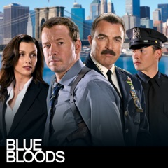 Blue Bloods, Staffel 4