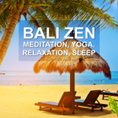 Bali Zen: 111 Tracks, Meditation, Yoga, Relaxation, Sleep, Spa, Reflections of a Tranquil Paradise, Oasis of Serenity del Mar, Refreshing Exotic Music for Good Night