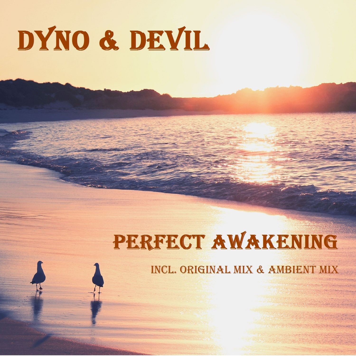 Perfect Awakening - Single