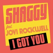 Shaggy - I Got You