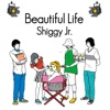 Beautiful Life - Single ジャケット写真