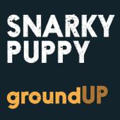 Quarter Master - Snarky Puppy