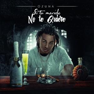 Si No Te Quiere - Single Mp3 Download