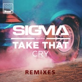 Cry (feat. Take That) [Remixes] - EP