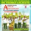 Canciones y Sones - Alma De Apatzingan