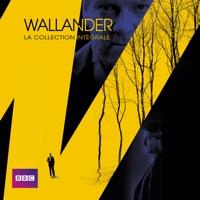 Télécharger Wallander, La collection intégrale (VF) Episode 12
