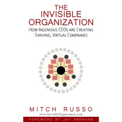 The Invisible Organization: How Ingenious CEOs are Creating Thriving, Virtual Companies (Unabridged)