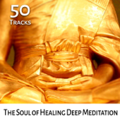 The Soul of Healing Deep Meditation: 50 Tracks - Tibetan Chakra Balancing, Spiritual Indian Flute, New Age Music, Reiki & Massage, Zen Relax, Calm Nature Sounds