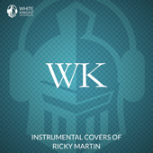 Instrumental Covers of Ricky Martin