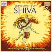 Shiva Tandava Stotram artwork