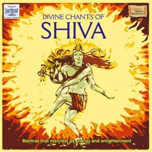 Uma Mohan - Shiva Tandava Stotram