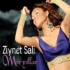 Ziynet Sali - Pshedelia artwork