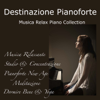 Liquid Pianoforte - Destination Piano artwork