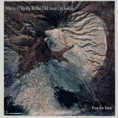 Pray For Rain-Marty O'Reilly & the Old Soul Orchestra