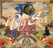 Bill Frisell - Gather Good Things