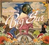 Bill Frisell - Somewhere