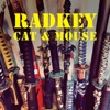 Radkey - Cat  Mouse Song Lyrics