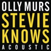 Icon Stevie Knows (Acoustic) - Single