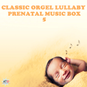 Classic Orgel Lullaby Prenatal Music Box 5