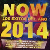 NOW: Los Éxitos del Año 2014