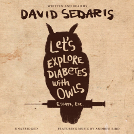 Let's Explore Diabetes with Owls (Unabridged) audiobook