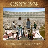 Crosby, Stills, Nash & Young - Teach Your Children (Live)