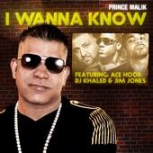 I Wanna Know (Remix) [feat. DJ Khaled, Ace Hood & Jim Jones] - Single