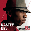 Fly Away (feat. Merldy B) - Nastee Nev